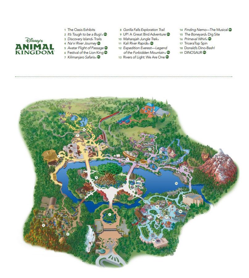 MAPA DE ANIMAL KINGDOM